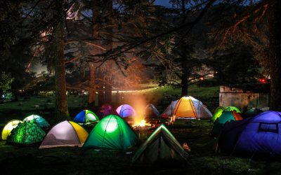 Spring's Songs For Camping